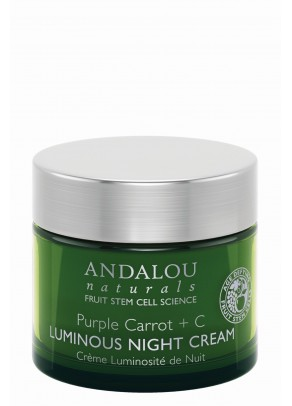 Purple Carrot + C Luminous Night Cream (with Hyaluronic Acid and Organic Fruit Stem Cells)