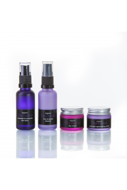 Organic Facial Travel Set for Normal Skin